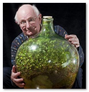 Как без полива в бутылке вырастить сад